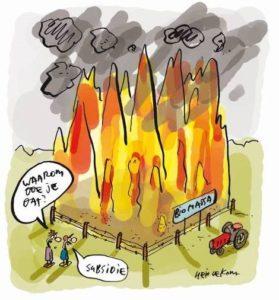 Eneco biomassa subsidie BWI Utrecht Lage Weide